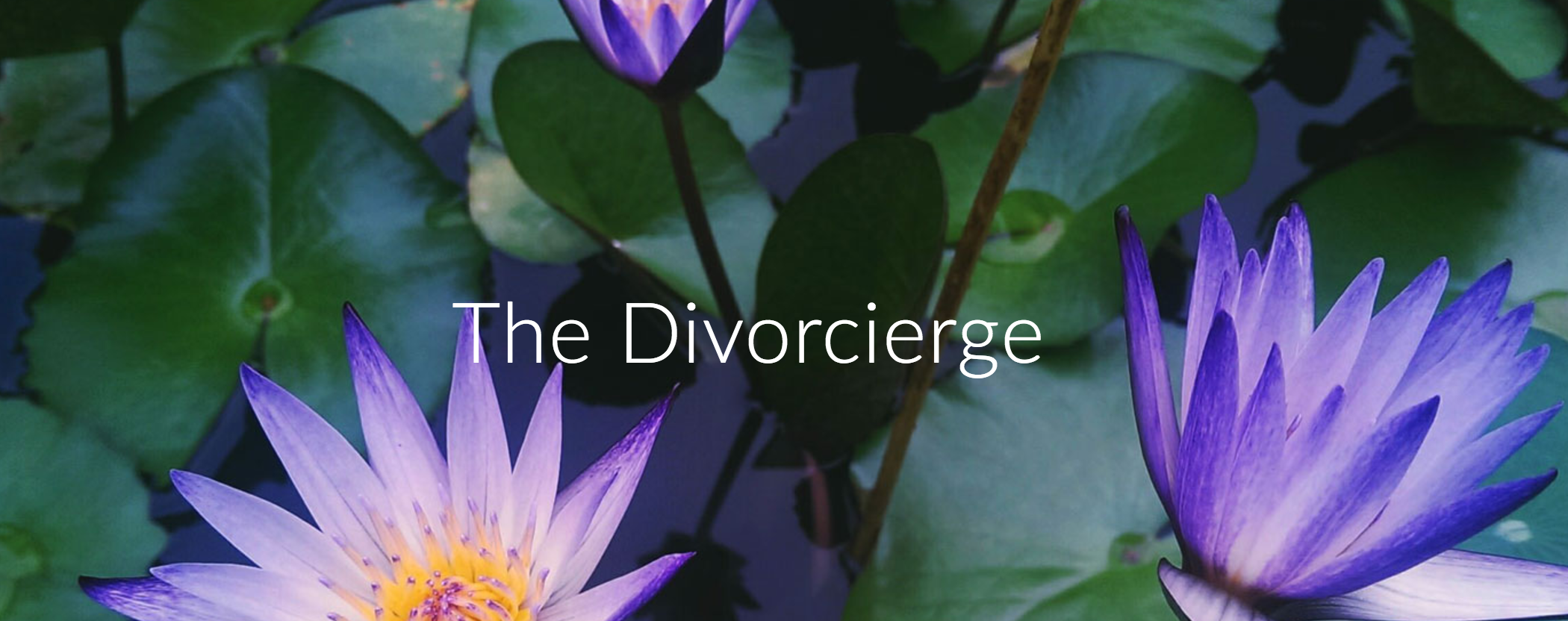 Guest Post by The Divorcierge: Get A Grip on Your Money!